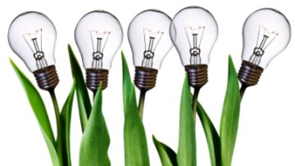 Abrindo uma Pequena Empresa : O que evitar!