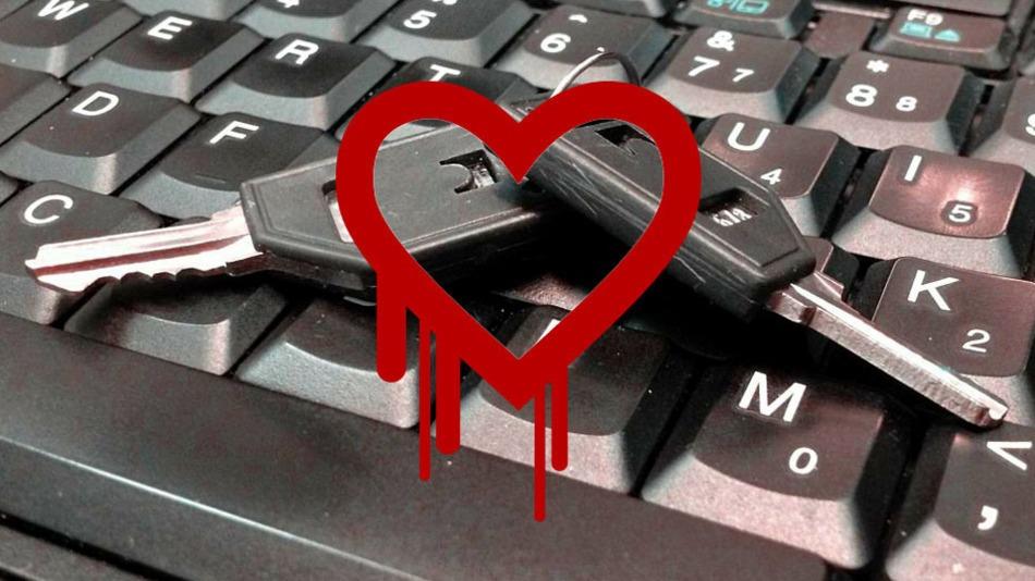 Sobre o Heartbleed: Sua informação está segura no Nibo