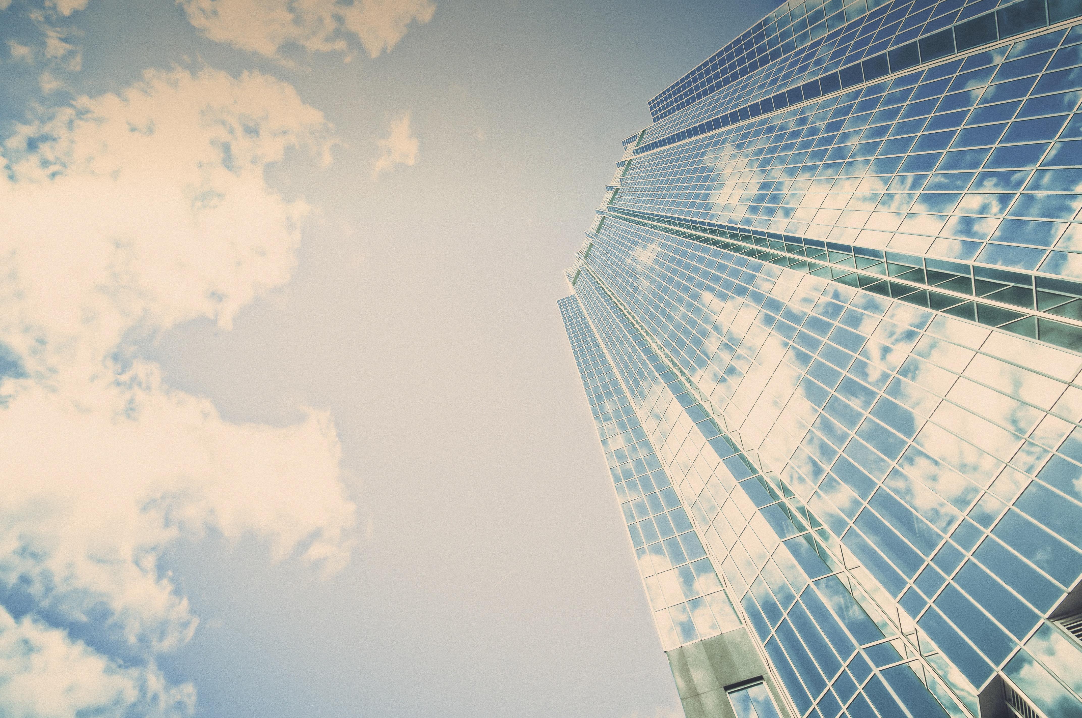 Conheça as áreas de atuação da Contabilidade e cresça seu negócio